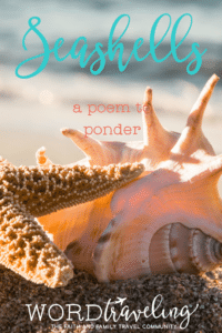 Seashells- A Poem to Ponder