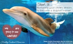 Travel is Nurturing Your Child's Dream