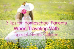 3 Tips for Homeschool Parents When Traveling With Special Needs Children