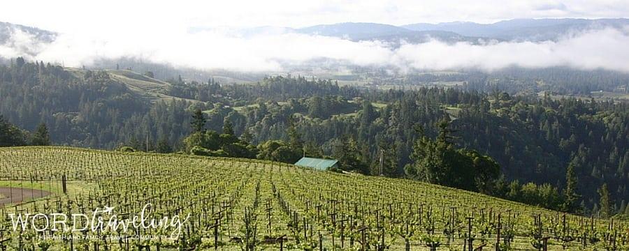 Esterlina vineyards
