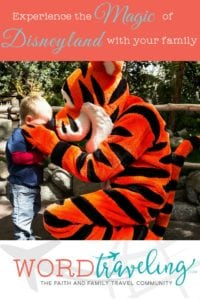 Vote for Disneyland Travel